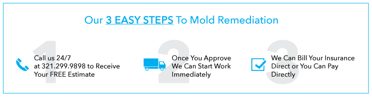 easy-steps-image_mold-remediation